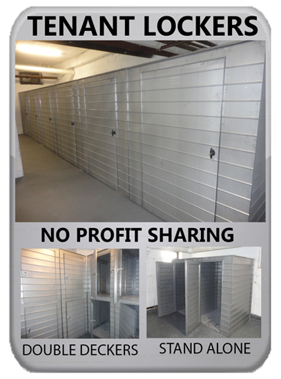 storage locker options
